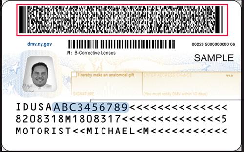 Driver's License Verification